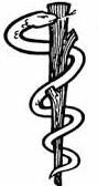 simbolo de la mitologia griega y la antigua Grecia y sus templos y monumentos